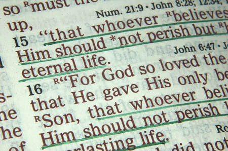 salmo: Bibbia versetto di Giovanni 3:16