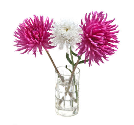 fresh summer flowers arranged in glass isolated on white