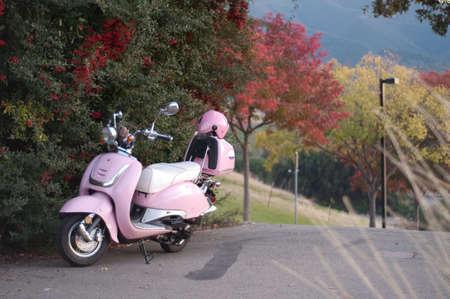 motorbike parked by beautiful autumnal foliage