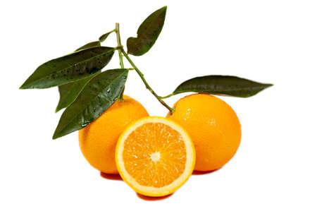 freah oranges isolated on white