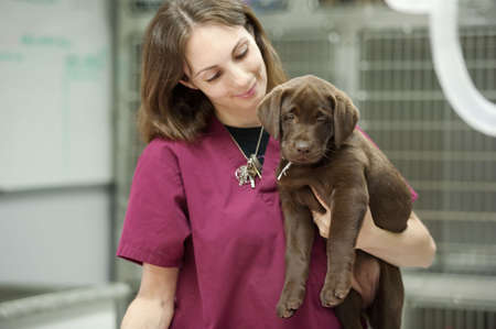 a veterinary assistant holds a young patient photo