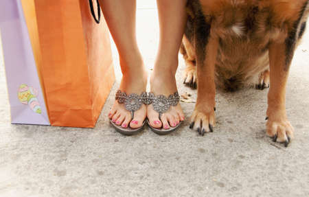 a shopper with dog and shopping bags