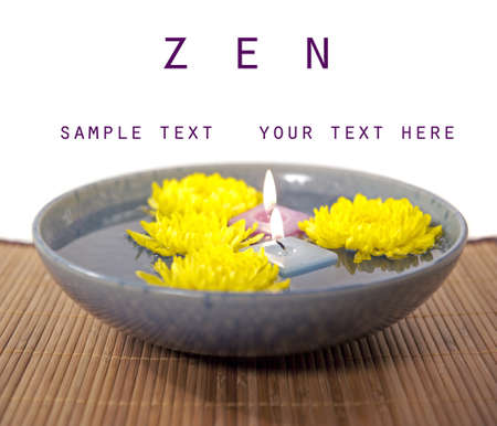 zen reflection chrysanthemum flowers with copy space photo