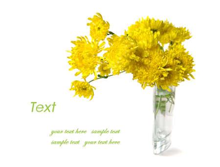chrysanthemum bouquet with copy space Banco de Imagens