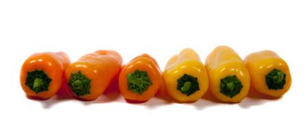 mexican peppers still life arrangement