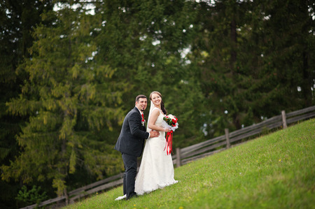 newlywed couple: wedding couple in the Carpathian Mountains