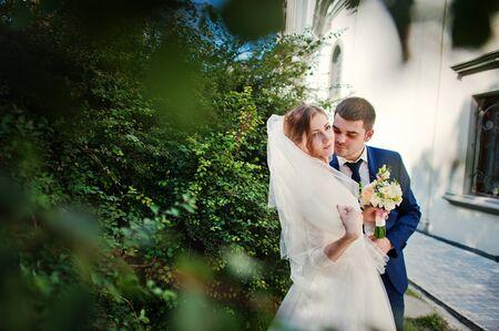couple background: Wedding couple background brushes Stock Photo