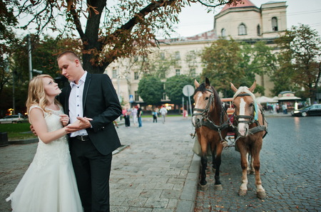 horse love horse kiss animal love: wedding couple walking on streets of city background horse