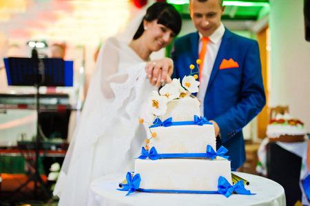 happy wedding: newlywed cut wedding cake Stock Photo