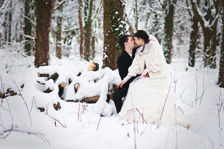 couple winter: Wedding couple in winter snowly forest