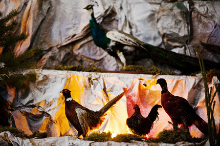 animal angelic: Very large christmas nativity crib