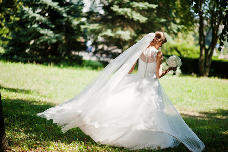 posed: Gorgeous bride posed on sunshine park