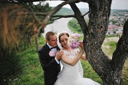 extravagant: Extravagant wedding couple hugging near pine tree