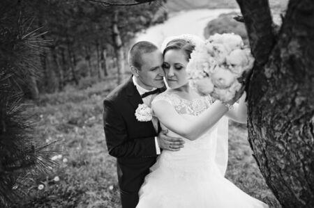 extravagant: Extravagant wedding couple hugging near pine tree, b&w photo