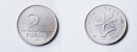 numismatic: Set of 2 forint Hungary coin, 1993