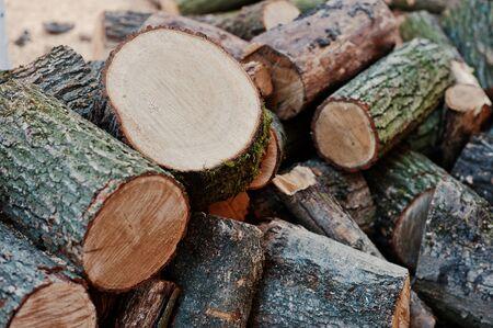 stockpile: A pile of chopped wood, sawn wood