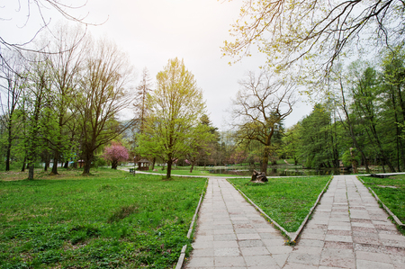 Two similar paths but different directions at park on spring Stock Photo