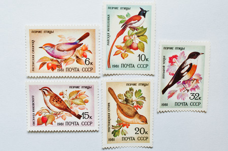postage stamps: UZHGOROD, UKRAINE - CIRCA MAY, 2016: Collection of postage stamps printed in USSR shows singing birds , circa 1981