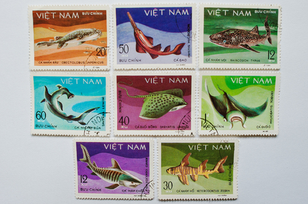 stingrays: UZHGOROD, UKRAINE - CIRCA MAY, 2016: Collection of postage stamps printed in Vietnam shows different saltwater fishes, sharks and stingrays, circa 1980