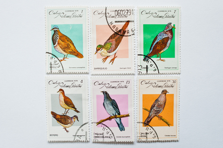UZHGOROD, UKRAINE - CIRCA MAY, 2016: Collection of postage stamps printed in Cuba correos shows birds series, circa 1979