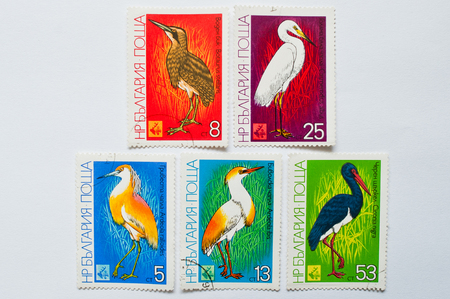 ardeidae: UZHGOROD, UKRAINE - CIRCA MAY, 2016: Collection of postage stamps printed in Bulgaria shows long-legged freshwater and coastal birds in the family Ardeidae, circa 1981