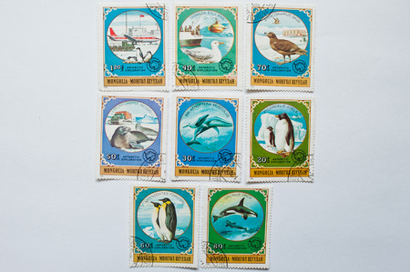 postage stamps: UZHGOROD, UKRAINE - CIRCA MAY, 2016: Collection of postage stamps printed in Mongolia, shows antarctic exploration series, circa 1980