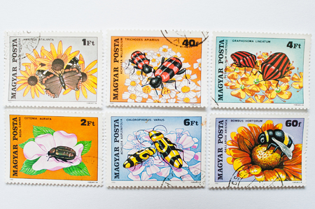 postage: UZHGOROD, UKRAINE - CIRCA MAY, 2016: Collection of postage stamps printed in Hungary, shows different types of insects and beetle, circa 1980