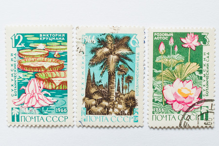 sukhumi: UZHGOROD, UKRAINE - CIRCA MAY, 2016: Collection of postage stamps printed in USSR, shows Sukhumi Botanical Garden, circa 1966 Editorial