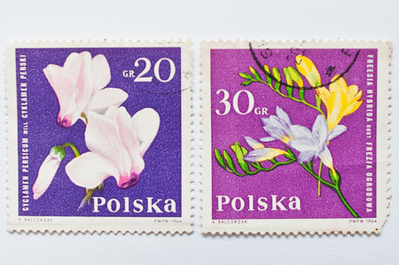 philatelic: UZHGOROD, UKRAINE - CIRCA MAY, 2016: Collection of postage stamps printed in Poland, shows orchid flowers, circa 1964