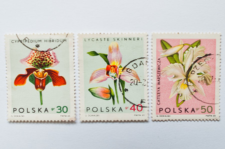 postage stamps: UZHGOROD, UKRAINE - CIRCA MAY, 2016: Collection of postage stamps printed in Poland, shows orchid flowers, circa 1965