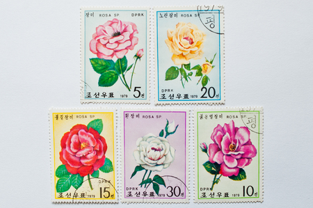 philatelist: UZHGOROD, UKRAINE - CIRCA MAY, 2016: Collection of postage stamps printed in North Korea (DPRK), shows different rose flowers, circa 1979