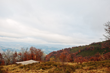 Wood ground on autumn red forest and mountains