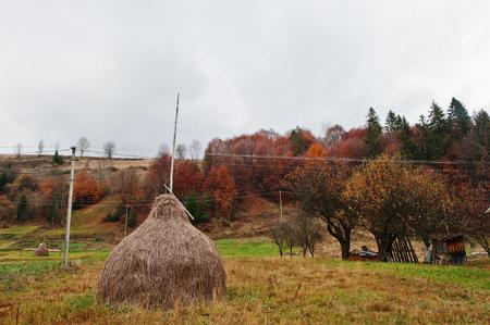 haycock: Haycock on small village on Carpathian mountains on autumn