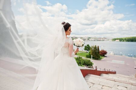 Cheerfull brunette bride with long veil against blue sky with amazing clouds background city lake.