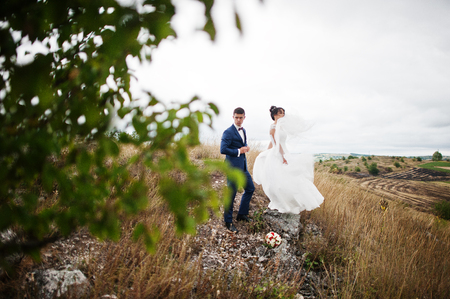enchanting: Gorgeous wedding couple standing on the stone on a windy wedding day in a countryside with a tree in a foreground.