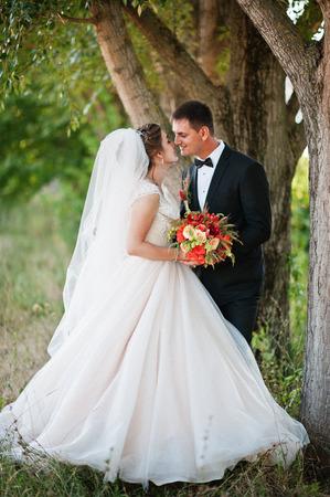 Fantastische bruiloftspaar genieten van elkaars bedrijf in het park. Stockfoto
