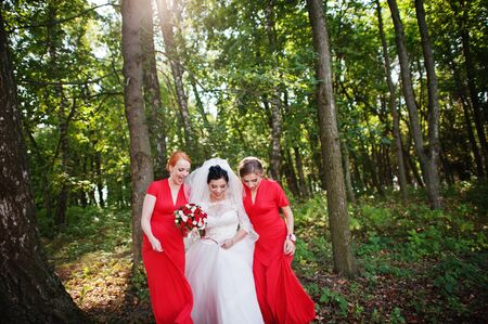 Gentle bride and beautiful bridesmaids are having great fun in the park on a sunny wedding day. Stock Photo