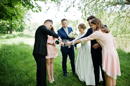 wedding feast: Wedding couple, bridesmaids and groomsmen drinking champagne on a festive wedding day in the park.