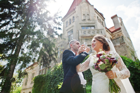 Beautiful wedding couple elegantly drinking champagne with a castle on the background. Stock Photo