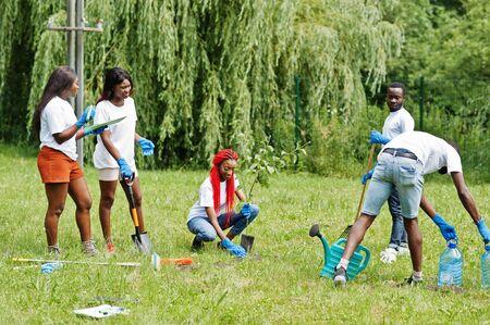 Groupe de volontaires africains heureux plantant un arbre dans le parc. Concept de bénévolat, de charité, de personnes et d'écologie en Afrique. Banque d'images