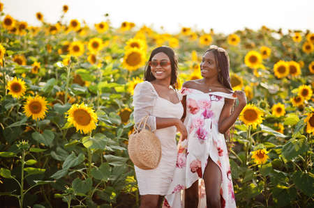 Two pretty young black friends woman wear summer dress pose in a sunflower field.