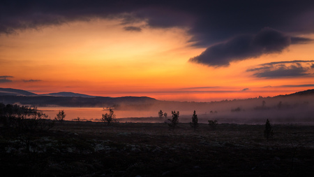 Foggy white night in the area of Nordgruvefeltet, middle Norway.