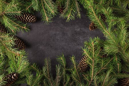 Christmas trees background Stock Photo