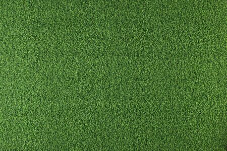 Texture of green grass