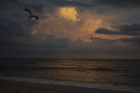 A cloudy sunset over the ocean at Cape May Point NJ with a gull flying overhead.
