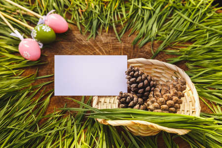 Happy easter artificial eags witht fir cone wooden backgroung photo