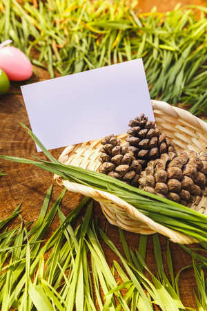 backgroung: Happy easter artificial eags witht fir cone wooden backgroung Stock Photo