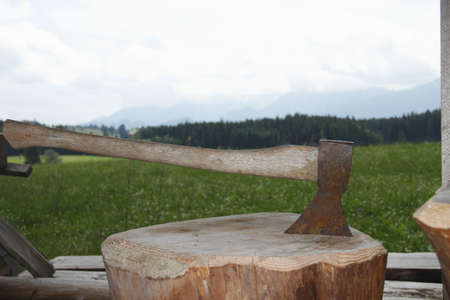 ax in the chopping block photo