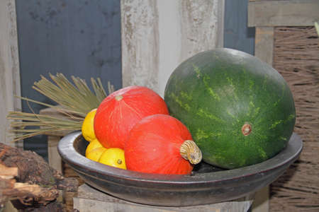 citrus fruits and melons