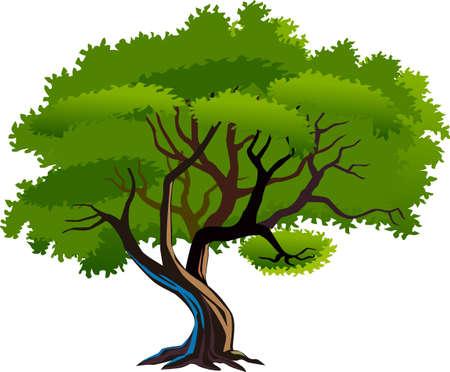 큰 나무.